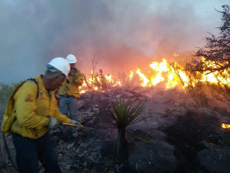 Destruye incendio más de 2 mil hectáreas en Chihuahua